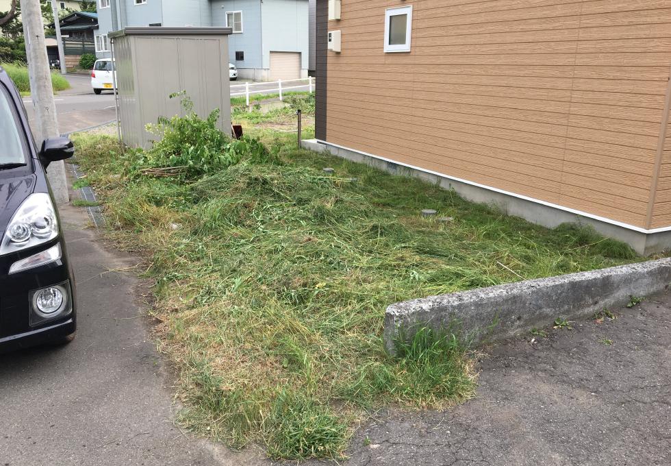 札幌市厚別区の舗装・畑・雑草対策工事、サイドの雑草の様子